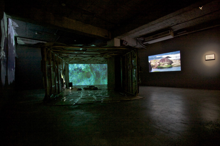 Cockroach Trap-The Mystery Hole, 2011, video installation, 6'04""