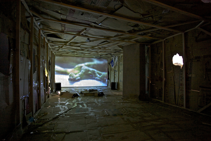 CockroachTrap-TheMystery Hole_2011_VideoInstallation_InstallationView2_web